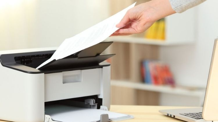 Best Printer for Senior Citizens